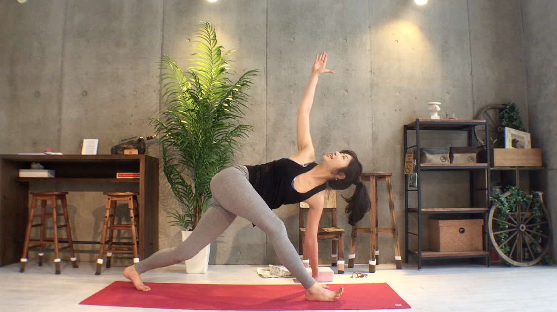 yogapose_spine_easy_twist